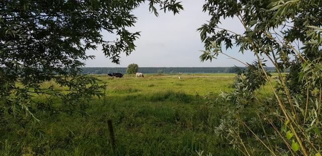 kfa2019-middelburg-genieten-tussen-aardenburg-en-middelburg-foto-ilse-bruggeman-lores